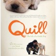 QUILL: THE LIFE OF A GUIDE DOG is a film by Yoichi Sai. Based on...