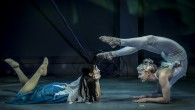 Article by Luis Vazquez Photo credit Mark Shelby Perry The circus is in town. No...